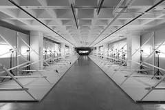 X (mimo b. rokket) Tags: linien lines geometrie geometry symmetrie symmetry interior diagonale exhibition blackandwhite bw sw schwarzweis canonefs1018mmf4556isstm