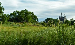(calemarie137) Tags: ogden utah field landscape trees grass water tower summer