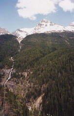 Bridal Veil falls on the Icefields parkway (S Curling) Tags: rockies canada waterfall