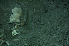 Exhumación As Covas (Lugo) (5)