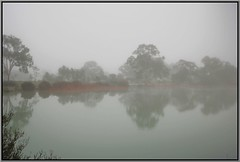 A Very Foggy Start To Spring (florahaggis) Tags: policepaddock horsham victoria australia pc3400 morning fog waterhole water reflections mist trees canon