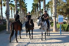polizia a cavallo (giulianoaloisio) Tags: polizia valencia spagna autorit lungomare spiaggia cavalli divisa vacanza sella legge