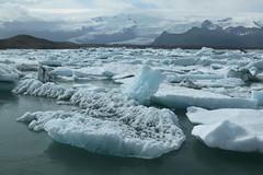 Jokulsrln_2184 (leoval283) Tags: ijsland iceland jokulsrln glacierlagoon ijs gletsjer