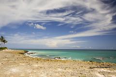 Punta Cana Caribbean Sea (katarzynarusilowicz) Tags: clouds travel caribbeansea puntacana dominicanrepublic wildnature sea ocean sky canon canonphotography exotic palmtrees