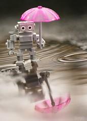 """No one has the right to rain on your dreams."" Rabindranath Tagore (xxsjc) Tags: xxsjc toyphotography stuckinplastic lego legography peterreid rain umbrella pink pacificnorthwest fall reflection reflectionphotography toy outdoors robot"