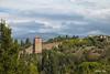 F&F (nataliym) Tags: firenze italy tuskany тоскана италия флоренция картини homedecor frame