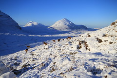 Beinn An Eoin and Beinn A' Chearcaill. (Gordie Broon.) Tags: winter snow mountains nature landscape geotagged photography scotland scenery alba scenic escocia hills corbett schottland torridon ecosse scottishhighlands northwestscotland beinnaneoin reddeerhinds canoneos7d beinnachearcaill gordiebroon