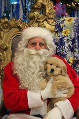 IMG_0074 (PMC Fresno) Tags: santa pet photos center medical spa pmc