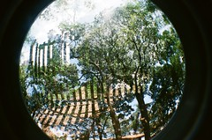 #345 ([ iany trisuzzi ]) Tags: film analog 35mm lomography toycamera fisheye fisheye2 project365 365days