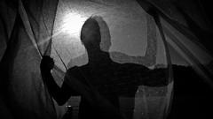 diverse personalita - different personalities (Antonio Crisponi) Tags: bw abstract art del persona donna different arte diverse interior feel arts diversity personality bn il persone e poi di una personalities antonio anima per scrivania capo base ai own noi alle essere modo nel traffico momenti sulla dopo nostro eople lati diversi subito accarezzare pugni occasioni dolcemente abbiamo amichevoli ognuno personalita sappiamo crisponi s