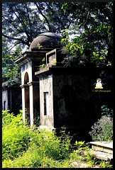Tombs (soumen19xx) Tags: wood old trees shadow india black color tree green bird cemetery leaves fauna architecture canon vintage dark geotagged eos stem flora focus memorial asia moments beak feather graves dome trunk 1855mm t3 chlorophyl 1100d