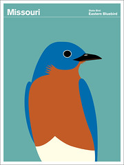 Missouri (Montague Projects) Tags: art birds illustration america print poster graphicdesign insects minerals grains mammals fossils julianmontague printcollection stateofamerica