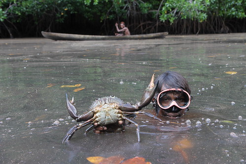 Diving for mudcrabs in Malaita, Solomon Islands. Photo by Wade Fairley, 2012.