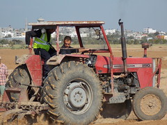 003 (Images from Gaza) Tags: tractor farming solidarity shooting gaza ploughing accompaniment bufferzone ceasefire israelimilitary december2012 khuzaa wheatplanting