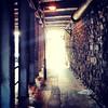 #mywalktowork #sheffield #light #tunnel #railwaybridge #stone #steel #steelcity #industrial #urban #decay (cool.britannia) Tags: light urban stone industrial decay steel sheffield tunnel railwaybridge steelcity mywalktowork