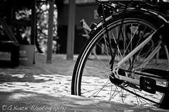 Bicycle detail (Giovanni Chiaia (aka Kiace)) Tags: berlin germany republic republik ddr democratic germania deutsche berlino demokratische