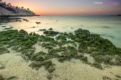 Muscat - Qurum Beach (Beauty Eye) Tags: longexposure sunset sea green photoshop canon landscape landscapes day seascapes outdoor stones scene adobe oman muscat goldenhour 2012 lightroom t3i cameraraw ultrawideangle   f3545 600d  beautyeye 1024mm canon600d   tamronspaf1024mmf3545diiild rebelt3i kissx5 canon600deos omanomancountry muscat rashamra