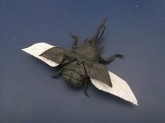 Flying Hercules Beetle (langko) Tags: bug paper insect flying origami foil tissue beetle hercules satoshi kamiya langko