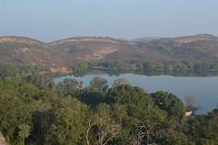 Ranthambhore National Park (Bloxham87) Tags: india wildlife sawaimadhopur ranthambhorenationalpark