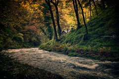 Hinterland (ShrubMonkey (Julian Heritage)) Tags: wood uk autumn trees house water fairytale rural forest woodland river sticks oak woods stream north lodge east devon valley mystical gorge wilderness canopy magical lyn hdr watersmeet hoar hinterland