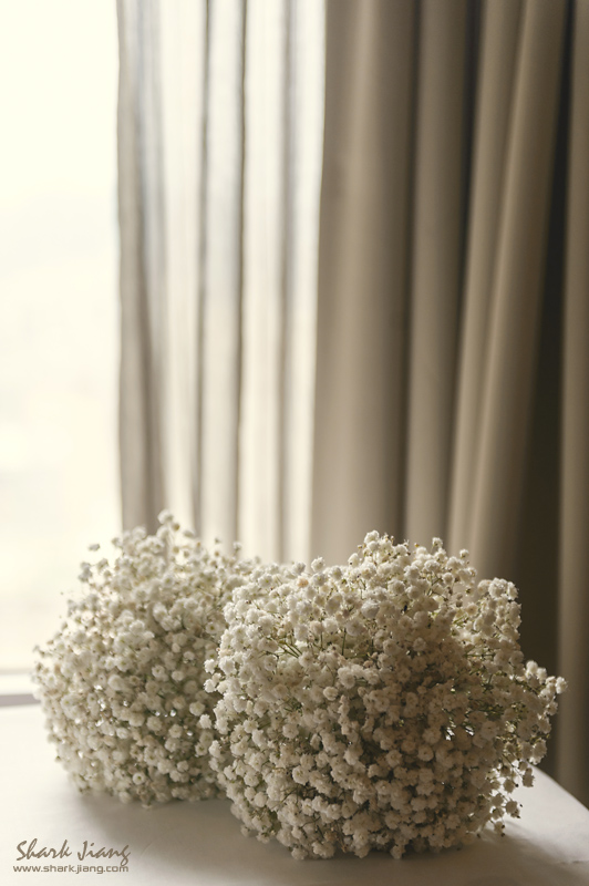 2012.11.18-blog-0035
