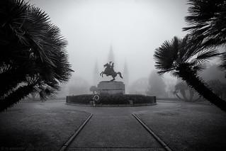 Foggy Square