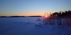 2013-01-18-0183.jpg (Antti Tassberg) Tags: winter sunset ice mobile espoo suomi finland nokia twilight cellphone lumi talvi j auringonlasku uusimaa 808 evenfall hanasaari talvinen phoneography pureview linholmsfjrden