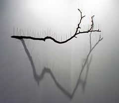 Acupuncture     Tree, Steel, Mixed media.     Installation     177 X 50 X 25 (cm)  70 X 20 X 10 (inch)