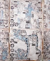 CU524 Mayan Dresden Codex (listentoreason) Tags: usa art history philadelphia archaeology museum america canon paper mesoamerica unitedstates pennsylvania favorites places penn upenn universityofpennsylvania ancientworld universityofpennsylvaniamuseumofarchaeologyandanthropology score35 pennmuseum ef28135mmf3556isusm museumofarchaeologyandanthropology mayacivilization
