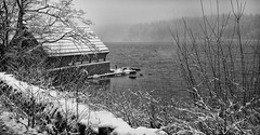 A boathouse at the west end of Loch Ard (dscott14) Tags: winter blackandwhite snow forest landscape mono loch boathouse lochard