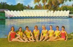 WEEKI WACHEE MERMAIDS FLORIDA (1950sUnlimited) Tags: travel tourism florida postcards mermaids 1960s vacations weekiwachee livemermaidsshow