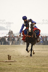 Tent pegging (Ajit Pal Singh) Tags: two horses india tractor game history sports sport festival youth rural speed photo dance high war colorful village bullock action folk bare events traditional religion culture mini games tent event riding lance winner vehicle warrior effort tug olympics sikh cart agriculture punjab popular schedule kila sponsor bravery agricultural daredevil stunt bhangra deliver courage gallop daring gallary implements ludhiana compete galloping quila sportsfestival footed grewal kabbadi pegging raipur giddha kilaraipur ruralsports tractive kilaraipursportsfestival