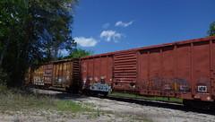 Railroad in St Marys GA - IMGP4579 (catchesthelight) Tags: stmarysga georgia coastline coastalsga nearlyfl stmarysrailroadcom rail railcars