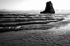shark tooth davenport (hbphototeach) Tags: approved davenport beach california seascape landscape sharktooth rock seastack santa cruz coast bayarea blackandwhite
