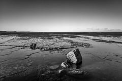 M1150828-Edit.jpg (meerecinaus) Tags: longreef beach collaroy newsouthwales australia au