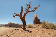 Monument Valley 0003 (Ezcurdia) Tags: monumentvalley utah arizona usa eeuu navajo tsebiindisgaii limolita navajotrivalpark johnfordpoint