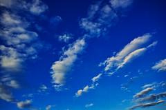 20160821_DP0Q5268 (NAMARA EXPRESS) Tags: landscape sky cloud blue weather moon deepsky deepblue morning summer fine outdoor color foveonclassicblue toyonaka osaka japan foveon sigma dp0 quattro wide ultrawide superwide namaraexp