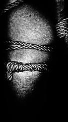Bound gold (martinmmyrhaug) Tags: bondage bdsm rope fetish