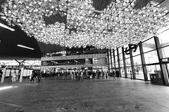 Look up (alideniese) Tags: rotterdamcentraalstation rotterdam thenetherlands southholland station trainstation urban urbanlandscape interior flooring ceiling ceilinglights building architecture people streetphotography