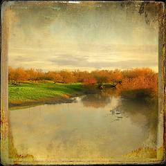 Tu allumes le matin pour moi (Alda Cravo Al-Saude) Tags: love passion river