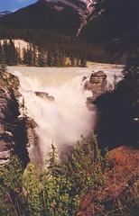 Athabasca falls (S Curling) Tags: athabasca waterfall rockies canada water