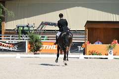 IMG_7476 (dreiwn) Tags: dressage dressur dressuur pferd reitturnier turnierreiten pferdesport horse horseback horseriding equestrian reitverein dressurprfung kandare doublebridle reiten pferde reitplatz ridingarena