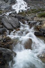 DSC_6322 (AmitShah) Tags: banff canada nationalpark