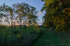 last light in pleasant valley (contemplative imaging) Tags: 2016 20160910 32 cipvca20160910d7000 d7000 september america american area center conservation contemplativeimaging cool day digital district dslr evening il ill illinois landscape lastlight mchenrycounty midwest midwestern natural nature nikon park partlysunny path photo photography pleasantvalley ronzack saturday summer tokina trail trees twilight usa woods