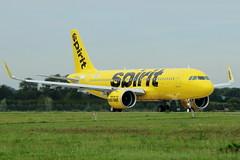 D-AXAT // Spirit Airlines // A320-271N // MSN 6833 // N901NK (Martin Fester) Tags: daxat spiritairlines a320271n msn6833 n901nk a320 msn 6833 a320neo spirit sharklets hamburg finkenwerder finkenwerderairport xfw xfwedhi airplane aircraft airbus airbusindustrie rto highspeedrto