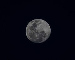 La Luna (dmunro100) Tags: moon full handheld adelaide spring 11600s luna canon eos 80d canonef70300mmf456lisusm