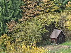 Hay Sheds of Murg Valley 14 (MJWoerner49) Tags: blackforest hut murgtal murg murgvalley northernblackforest gernsbach reichental forbach gausbach barn shed hay haybarn hayshed autumn