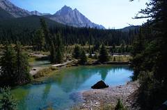 DSC_6550 (AmitShah) Tags: banff canada nationalpark
