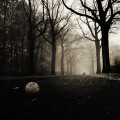 The Accident (opdrie) Tags: road street trees blackandwhite mist tree car misty ball vanishingpoint shadesofgrey artlibre artlibres winnercontestbw102group500x500