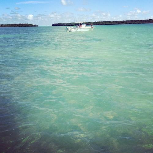 #Sandbar bizness #biscaynenationalpark #sandscut